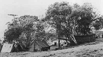 Main Camp photo image