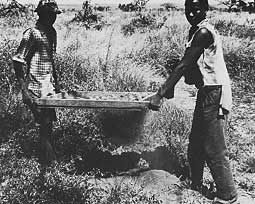 Men Sifting for Garnets photo image