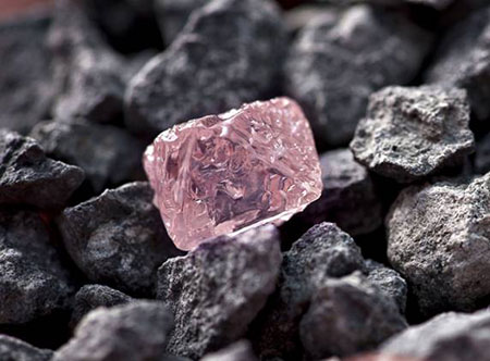 Pink Diamond photo image