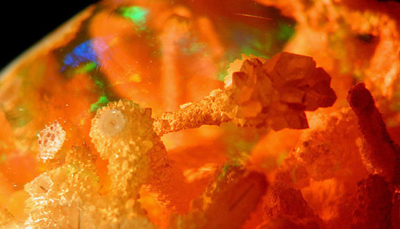 Opal Inclusion photomicrograph image