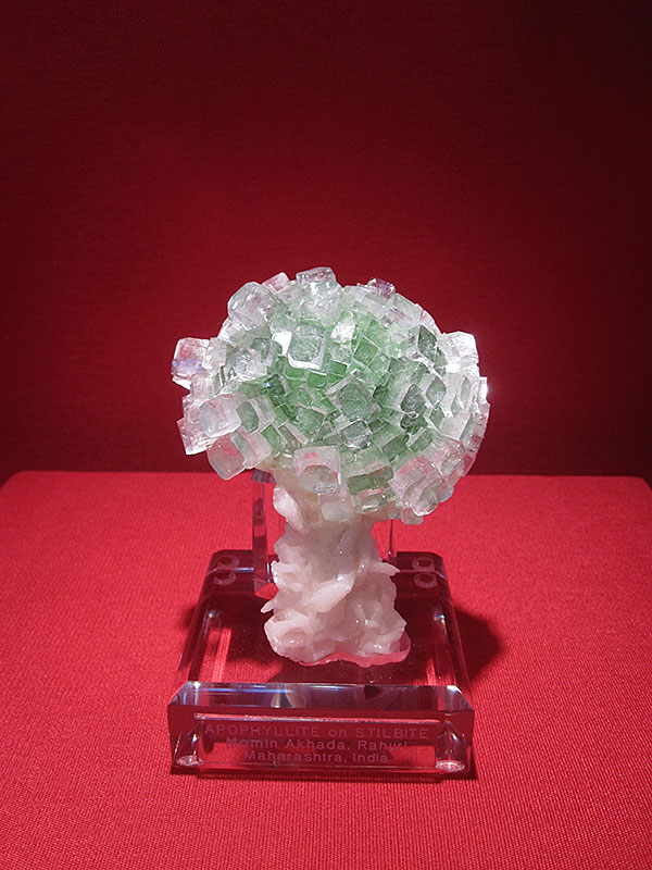 Apophylite Tree photo image