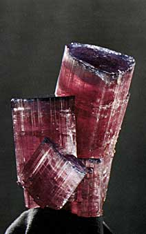 Tourmaline Group photo image