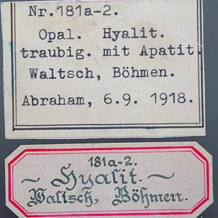 Hyalite Labels photo image
